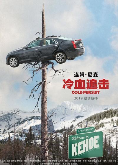 冷血追击海报