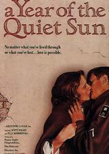 寂静太阳年海报