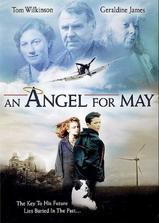 梅的天使海报