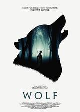 Wolf海报