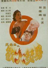 王先生之欲火焚身海报