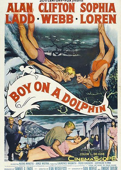 金童海豚海报