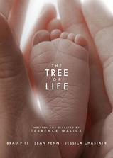 生命之树海报
