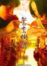 鸳鸯蝴蝶海报