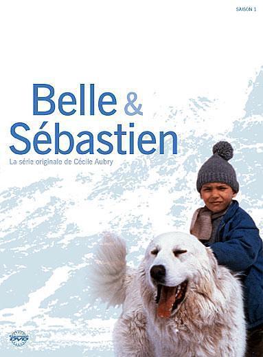 灵犬雪莉 第一季海报