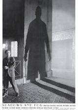 影与雾海报