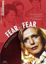 恐惧中的恐惧海报