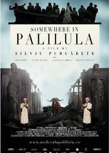 帕利路拉某处海报