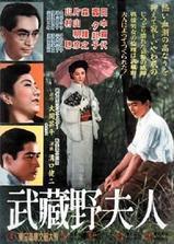 武藏野夫人海报