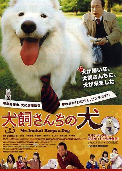 犬饲先生养狗记海报