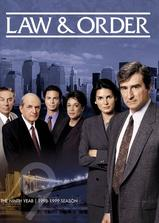 法律与秩序 第九季海报