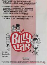 说谎者比利海报