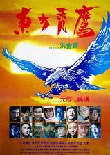 东方秃鹰海报