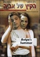 艾维亚的夏天海报