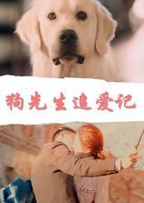 狗先生追爱记海报
