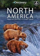 北美大地海报