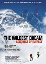 最狂野的梦想:征服珠峰海报