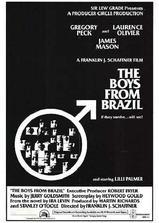 巴西来的男孩海报