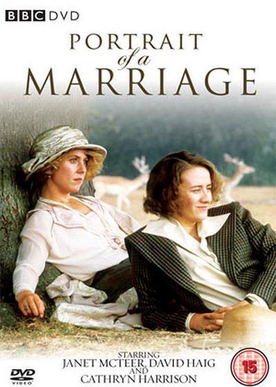 婚姻的肖像海报