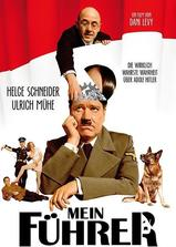 拜见希特勒海报