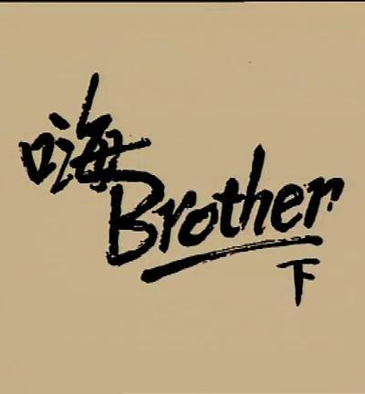 小說家族之嗨!BROTHER海报