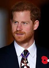 哈里王子 Prince Harry Windsor