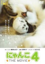 猫咪物语4海报