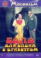 大象音乐会海报