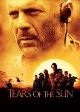 太阳泪海报