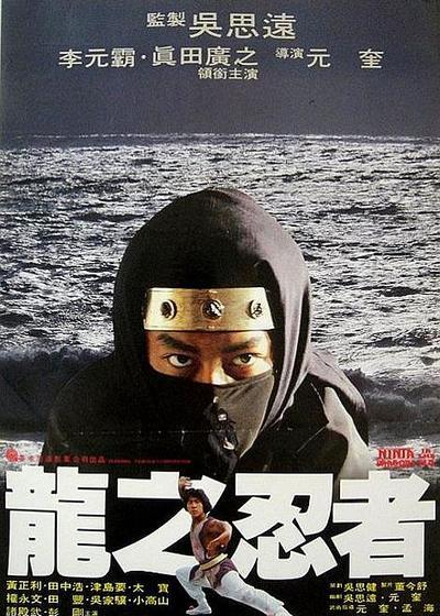 龙之忍者海报