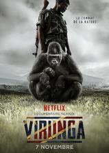 维龙加海报