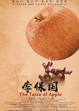 李保国海报