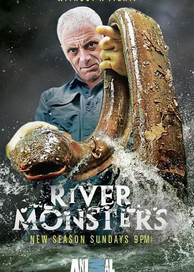 河中巨怪 第六季海报