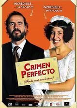 完美犯罪海报