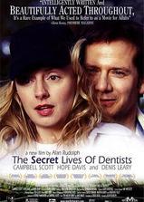 牙医的秘密生活海报
