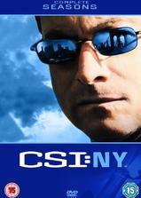 犯罪现场调查:纽约 第六季海报