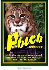 小山猫古纳克海报