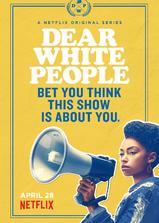 亲爱的白种人 第一季海报