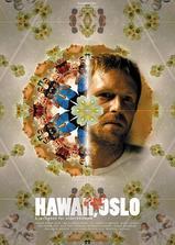 奥斯陆的夏威夷海报