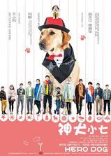 神犬小七 第一季海报