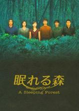 沉睡的森林海报