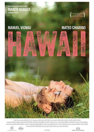 夏威夷海报