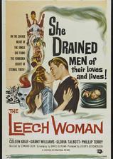 吸髓女人海报
