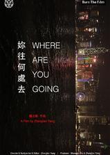 你往何处去海报