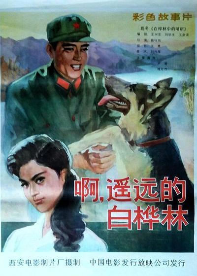 白桦林中的哨所海报