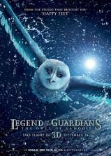 猫头鹰王国:守卫者传奇海报