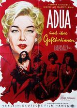 阿朵拉和她的朋友们海报