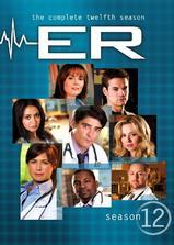 急诊室的故事 第十二季海报