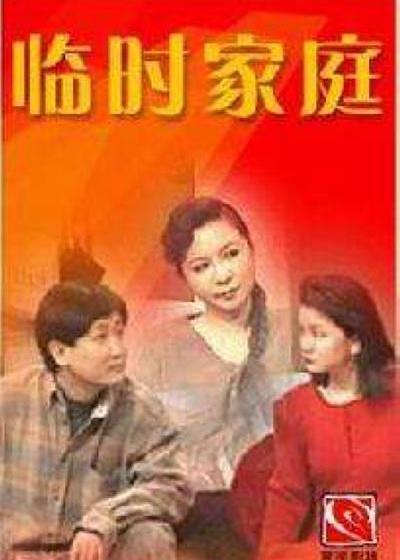 临时家庭海报
