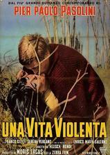 暴力人生海报